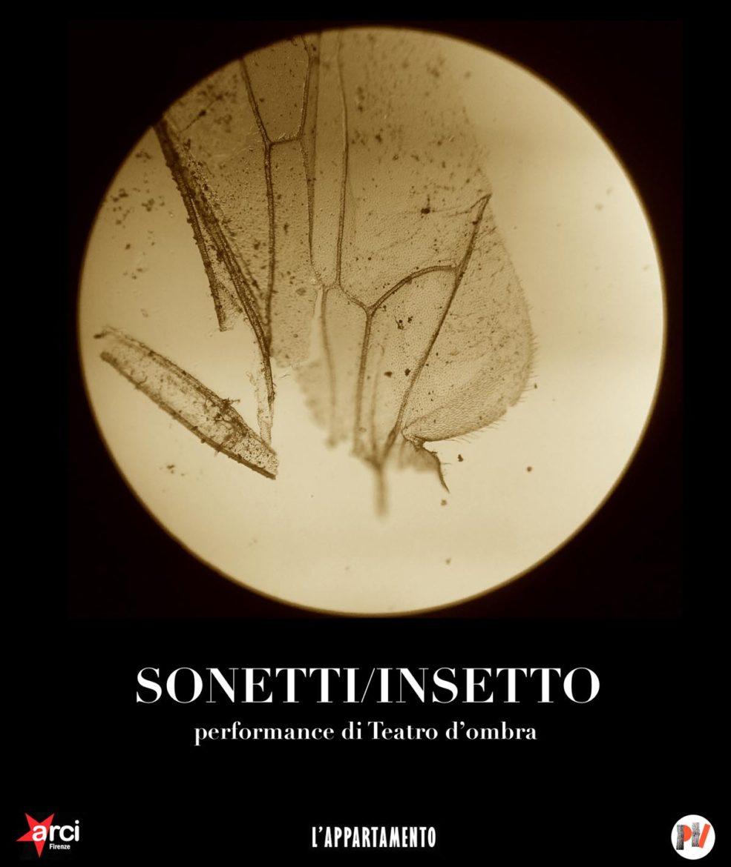 sonetti - insetto